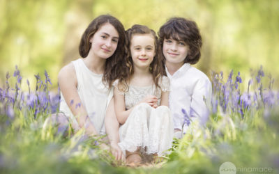 Bluebell photo shoot, Hertfordshire