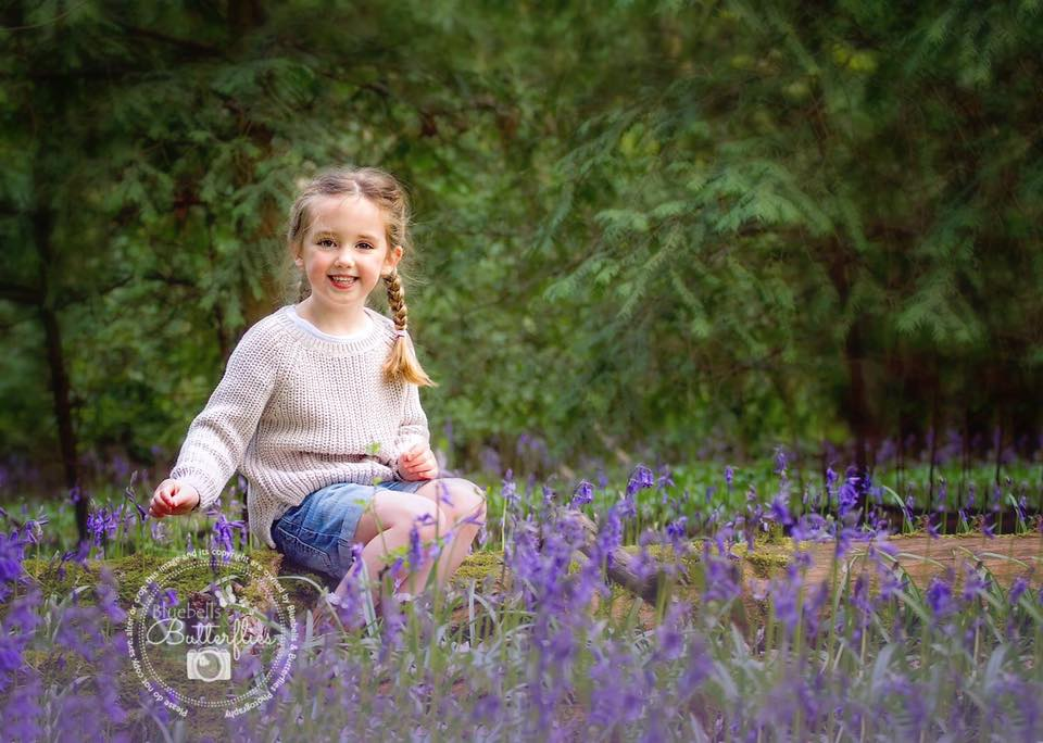 Bluebells and Butterflies photography
