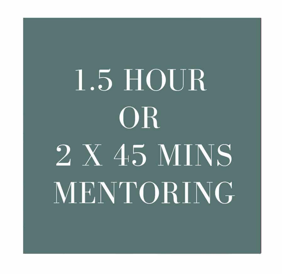 1 half hour mentoring