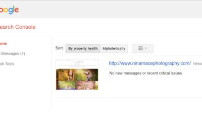 Business tips for photographers: Fetch as Google Tool