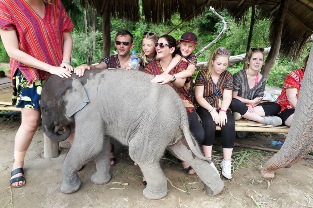 Elephant Jungle Sanctuary Chaing Mai