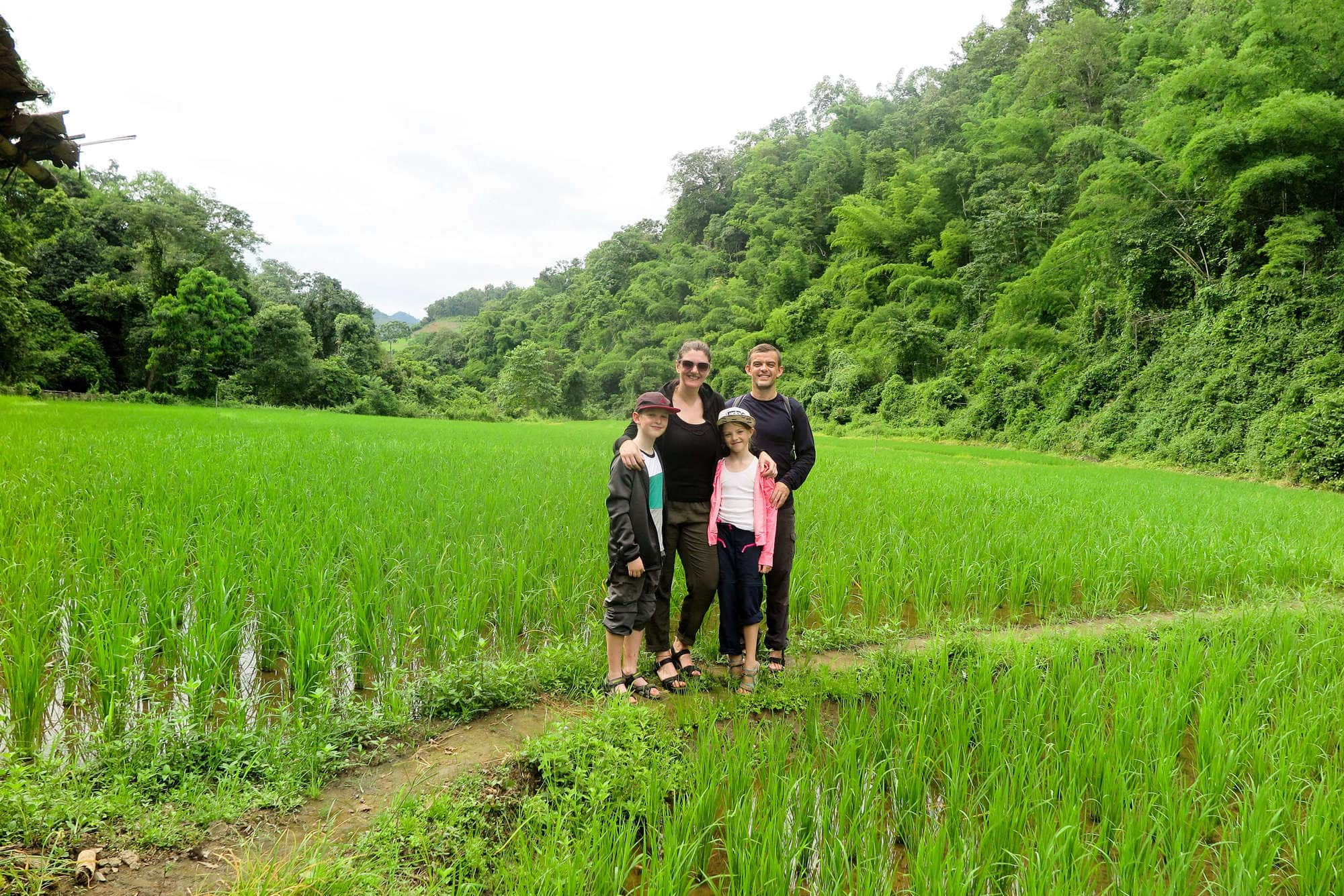 At the families rice field
