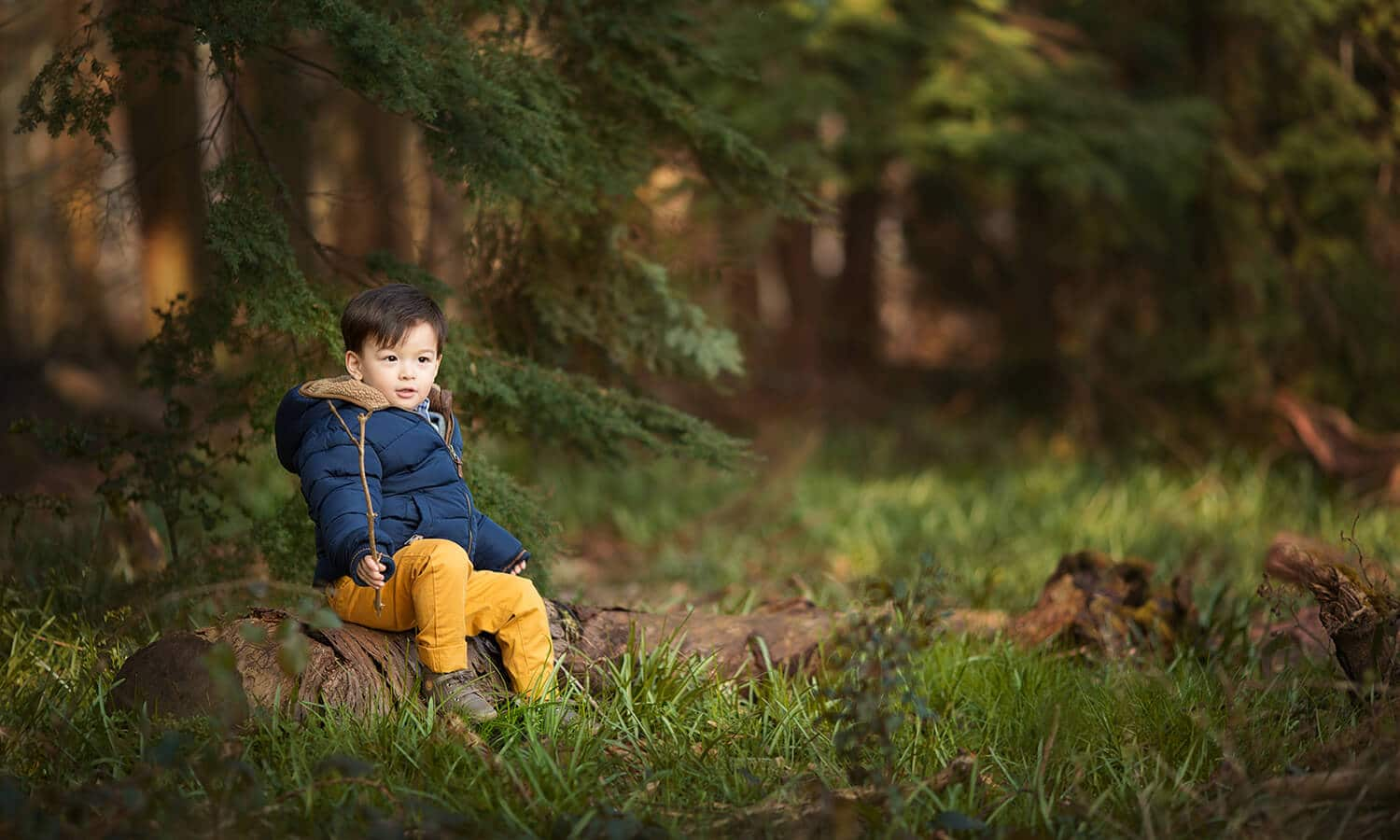 Boy in the woods being photographed in Camberley