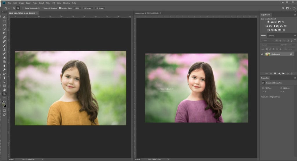 Photography editing tips: Colour replacement tool in Photoshop