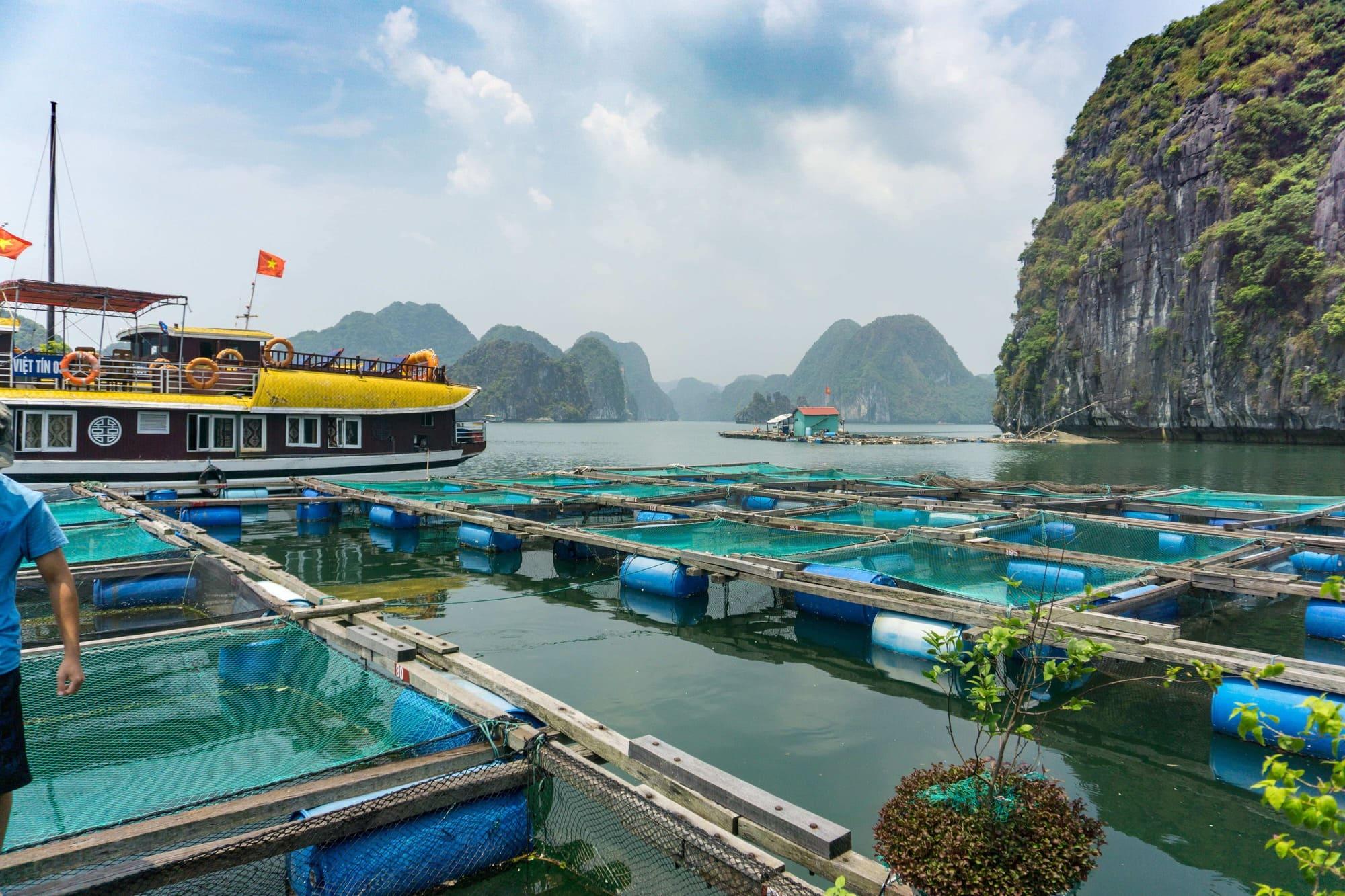 Vietnam August 2018_90