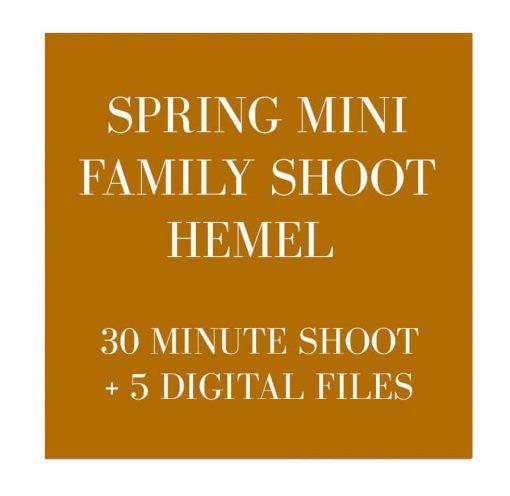 family photographer hemel hempstead
