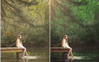 Professional Photography Inspiration – Green