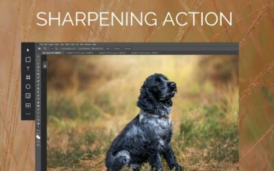 Sharpen your images in Photoshop FREE ACTION