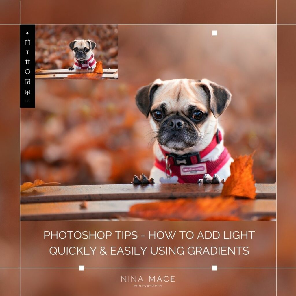 Photography Tips: Using gradients in Photoshop to add light